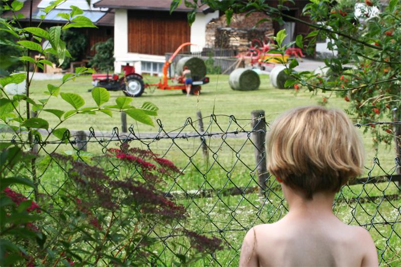 gras maaien de Berghut pension Oostenrijk Rauris