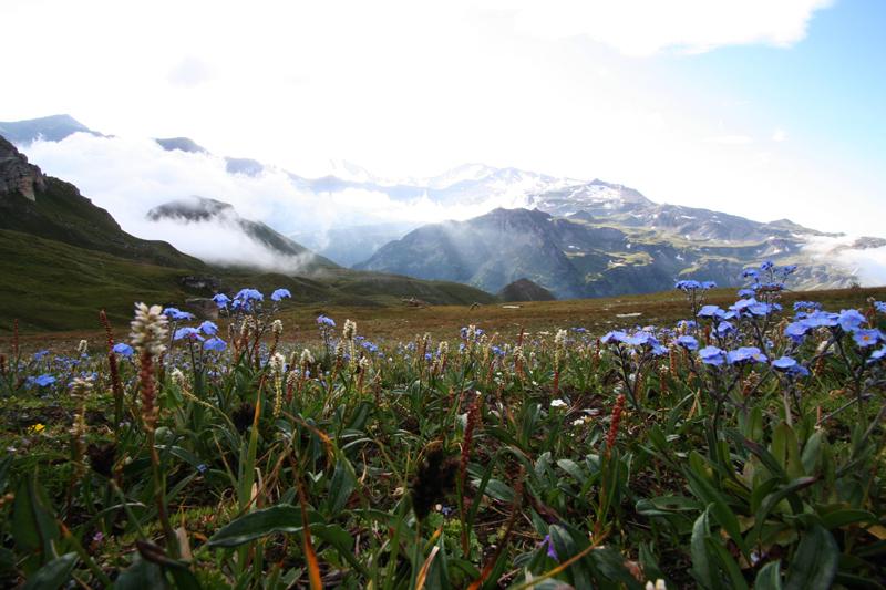 bergwandelen de Berghut Rauris Oostenrijk