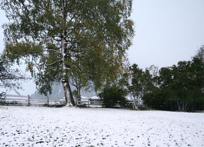 sneeuw in de Berghut Rauris Oostenrijk kindvriendelijk