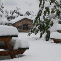 Sneeuw op komst: tijd voor ons winterprogramma!