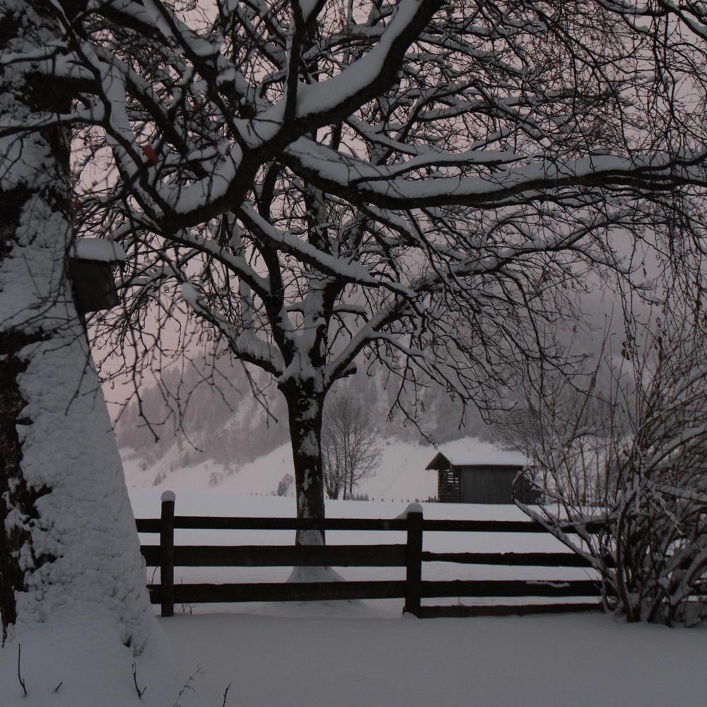 vierkant winterfoto