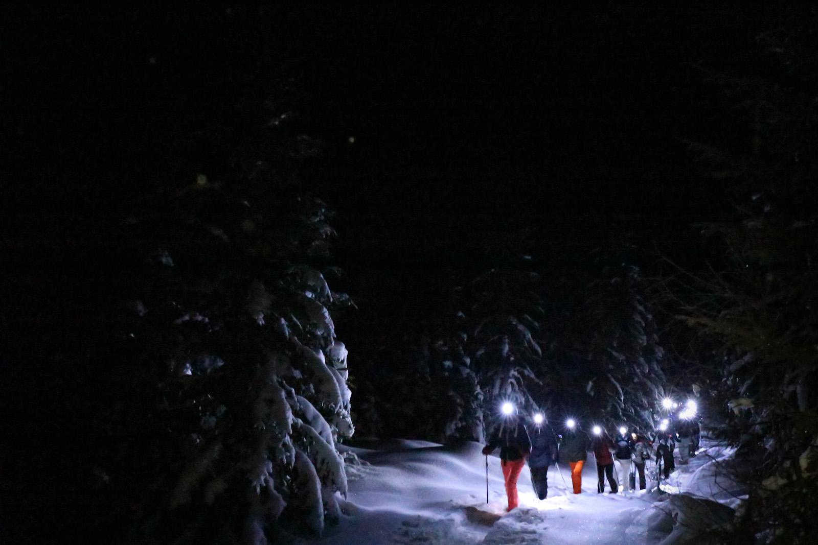teambuilding Alpen bergen groepsaccomodatie