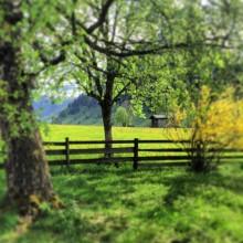 zomervakantie in de bergen bijzondere actieve vakantie in de bergen pension kindvriendelijk de Berghut Oostenrijk Rauris
