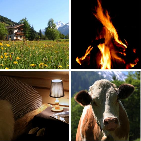 zomervakantie vieren in de Berghut in Oostenrijk