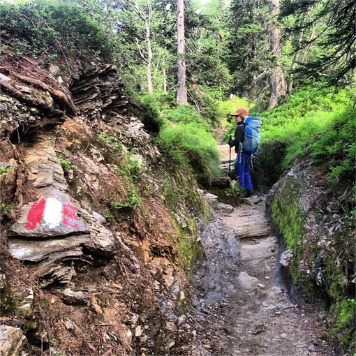 Bergwandelen met kinderen in Oostenrijk bij de Berghut