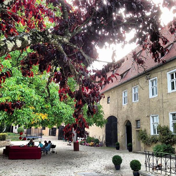 genieten onder de grote walnotenboom - SchlossMoehren.com