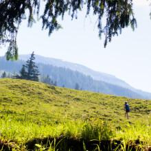 berglucht is gezond de Berghut.com