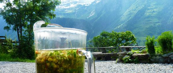 kruidenthee zelf maken de Berghut.com klein