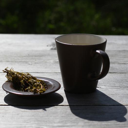 thee van dennentakken - deBerghut klein