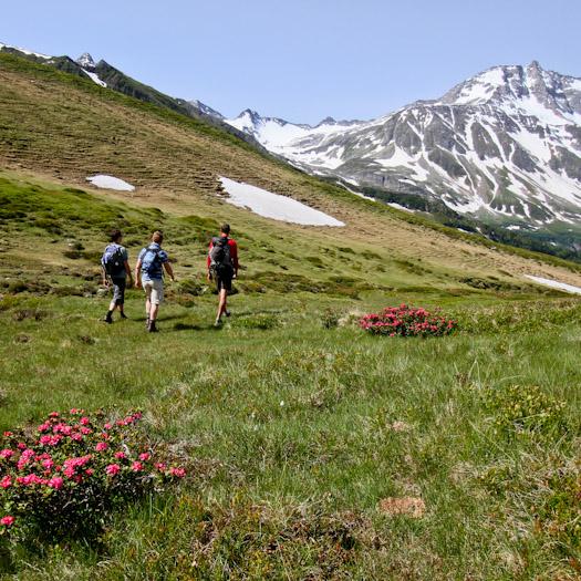 zomer in de Berghut.com actieve vakantie met kinderen in Oostenrijk kleinschalige accomodatie (12 van 44)