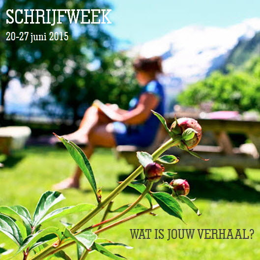 Schrijfweek 2015 in de Berghut boek schrijven