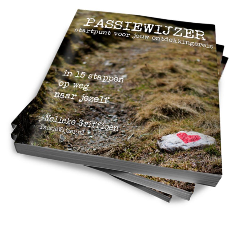 eBookcover de PassieWijzer.nl