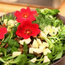 Een topsalade van de Berghut