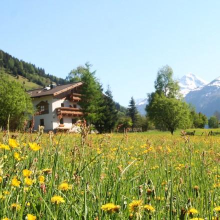 _de Berghut.com zomer