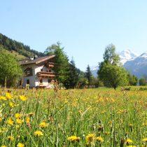Vacature: 2 aanpakkers die van bergen houden