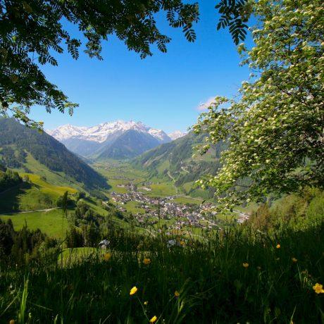 de Berghut appartementen zomervakantie kindvriendelijk vakantiewoningen Rauris Oostenrijk Salzburgerland (8)