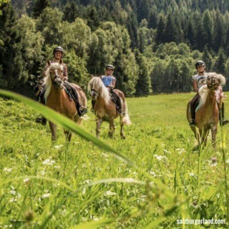 de Berghut appartementen zomervakantie kindvriendelijk vakantiewoningen Rauris Oostenrijk Salzburgerland Paardrijden reiten